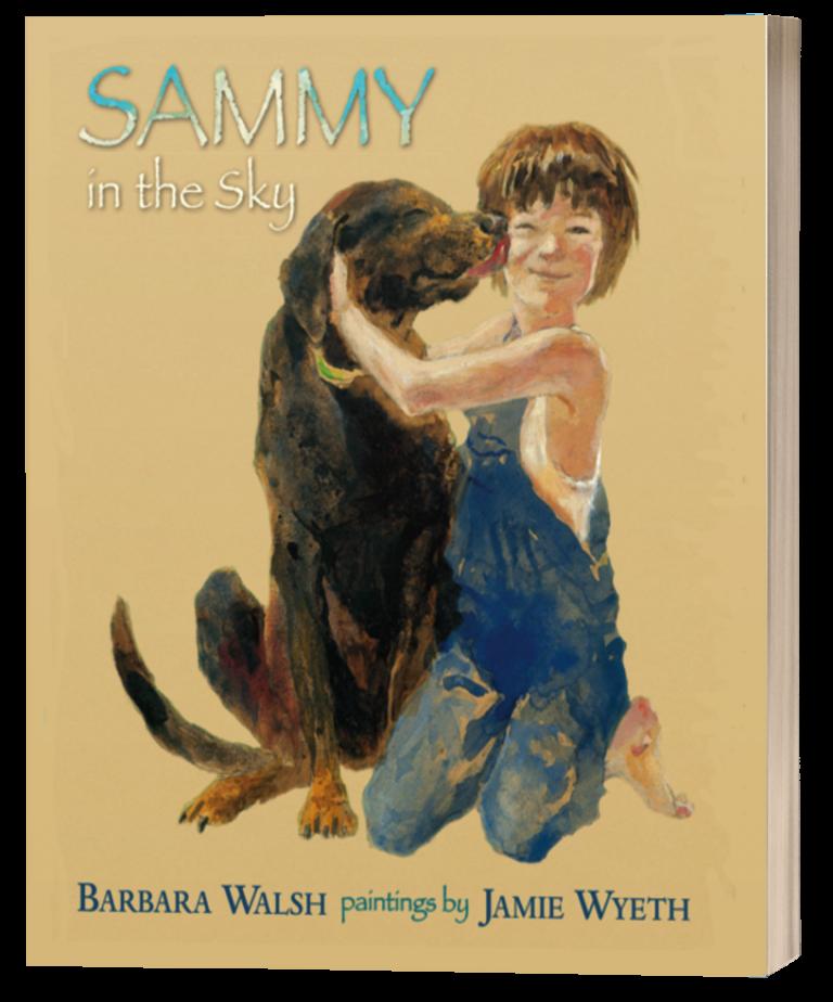 Sammy Cover 3d